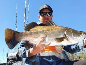 What's biting around Bundaberg waters this week