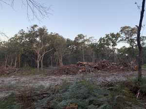 Millionaires furious over housing land clearing
