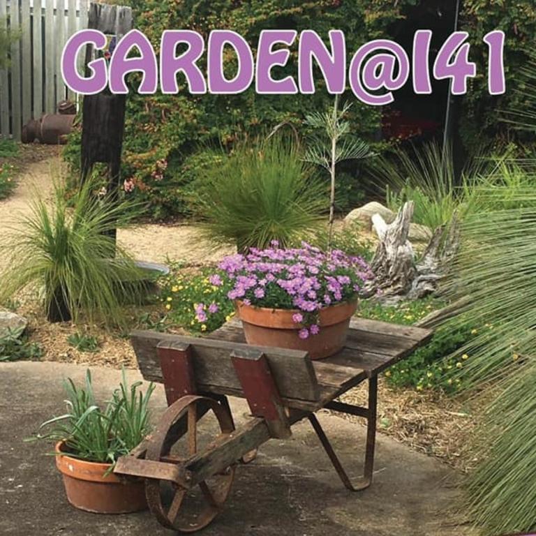 Open Garden at 141 Pine Street this Saturday.