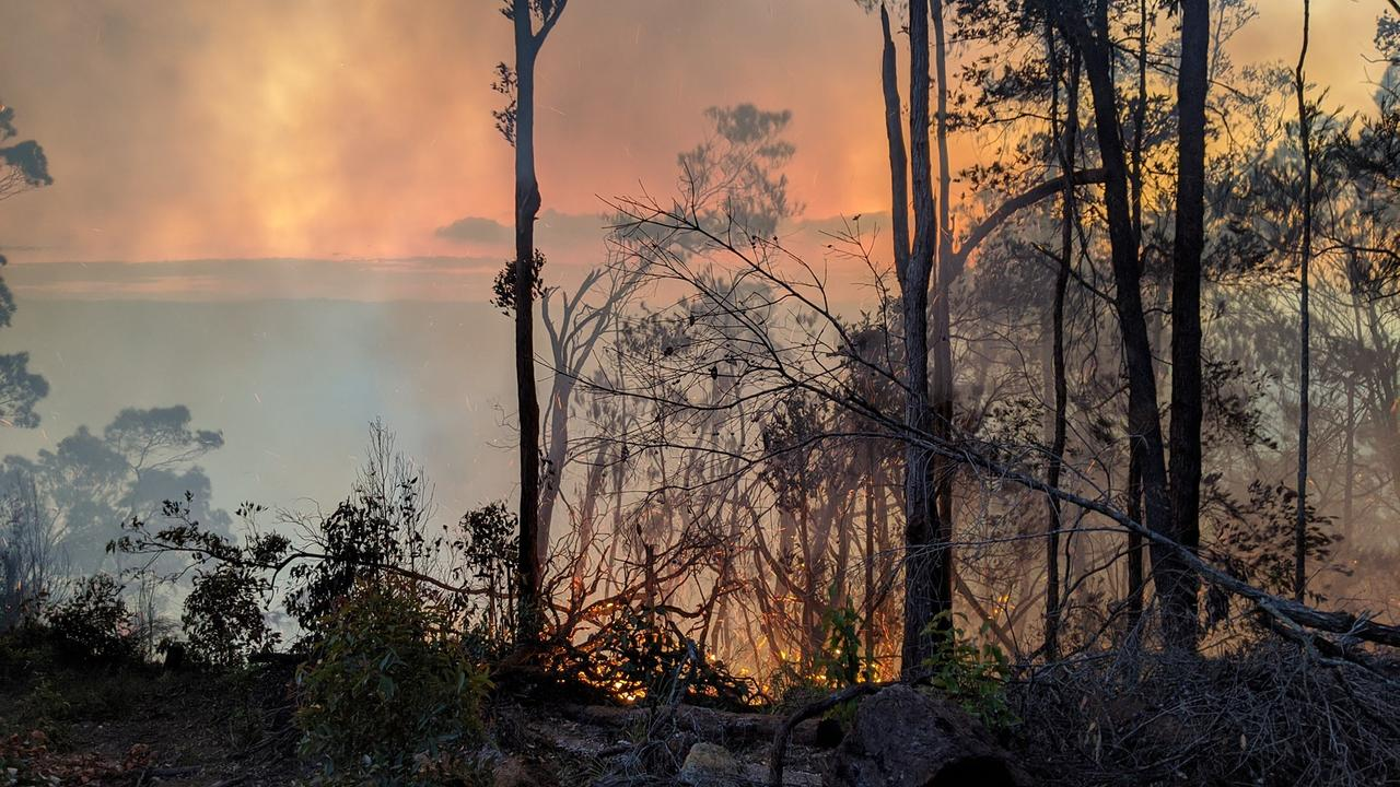 The blaze broke out on Thursday afternoon near the Springbrook Visitor Centre. Picture: Mudgeeraba Rural Fire Brigade.