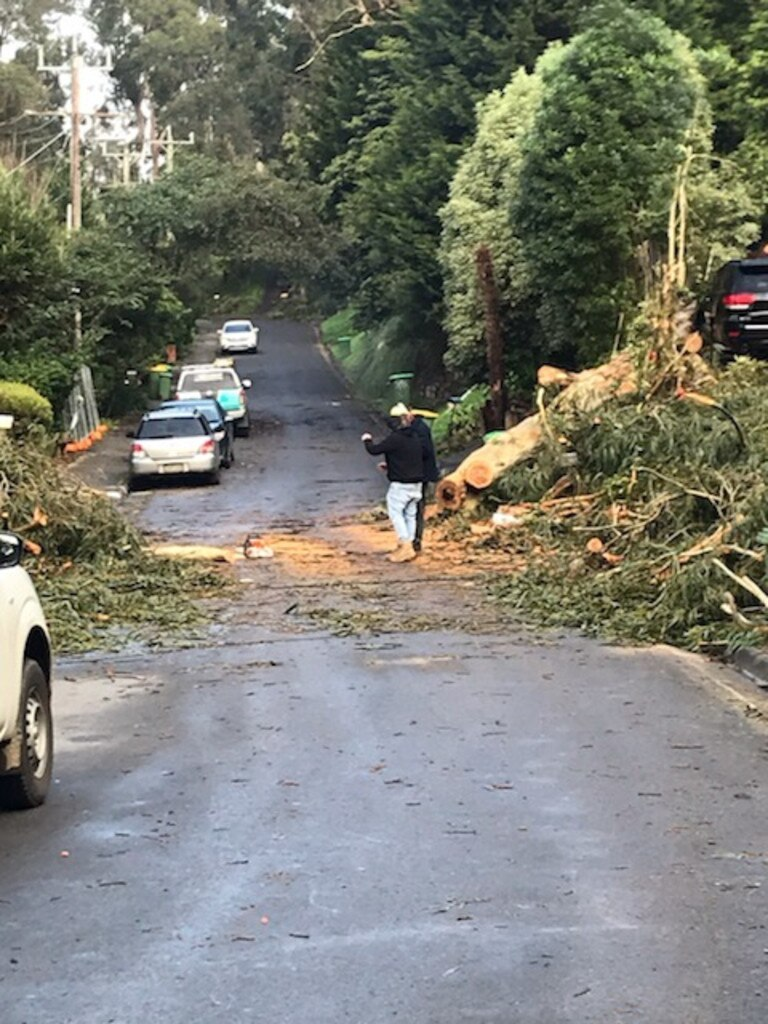 Damage on Kaola St, Belgrave. Picture: Sharon McGowan
