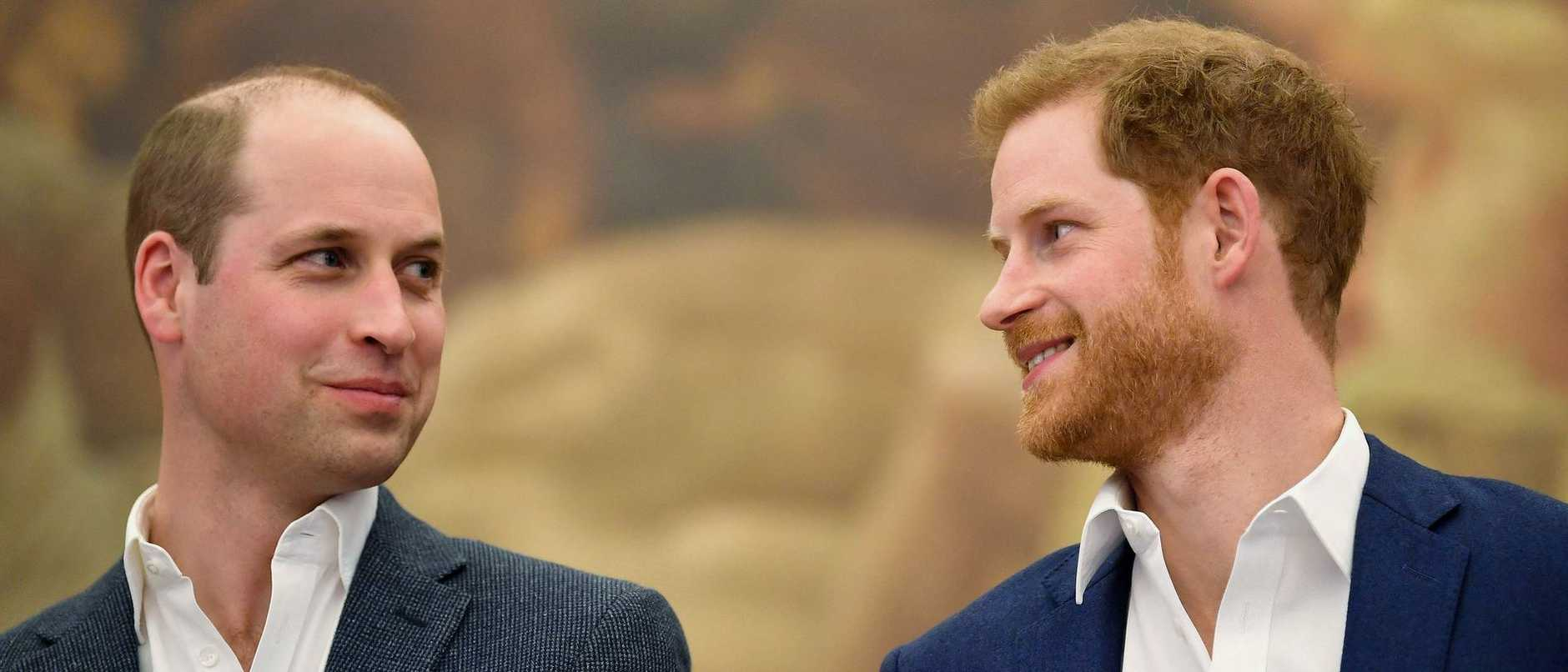 The move is a rare sign of public unity for the brothers since Prince Harry and his wife, Meghan Markle, left the royal family.