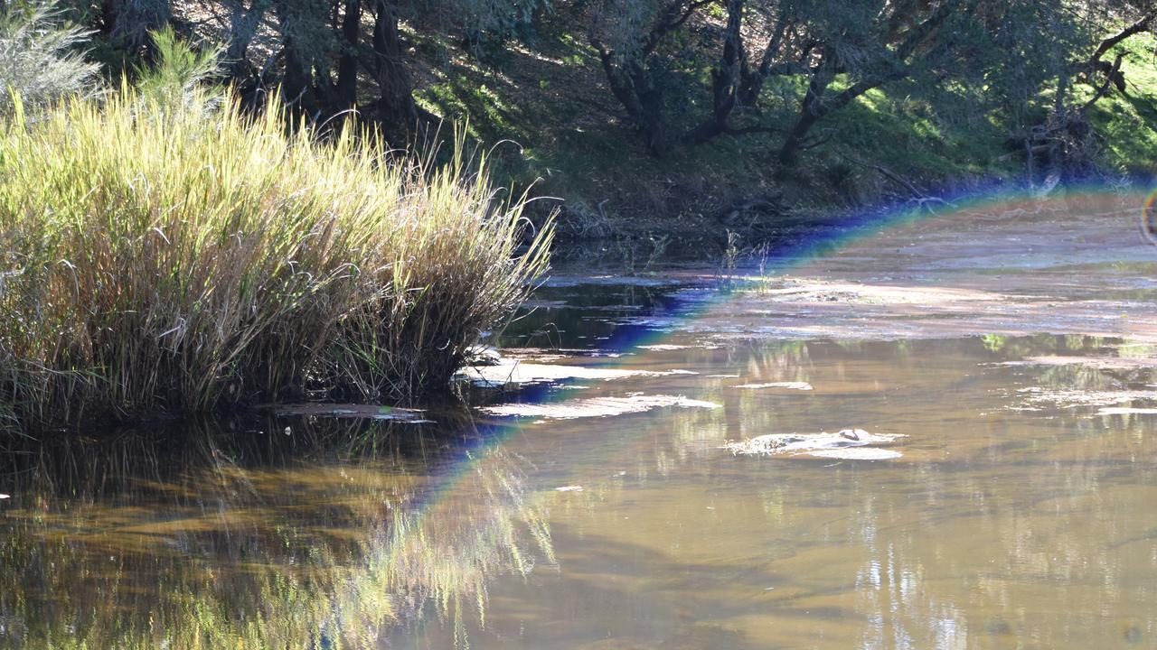 The Clarence River at Tabulam.