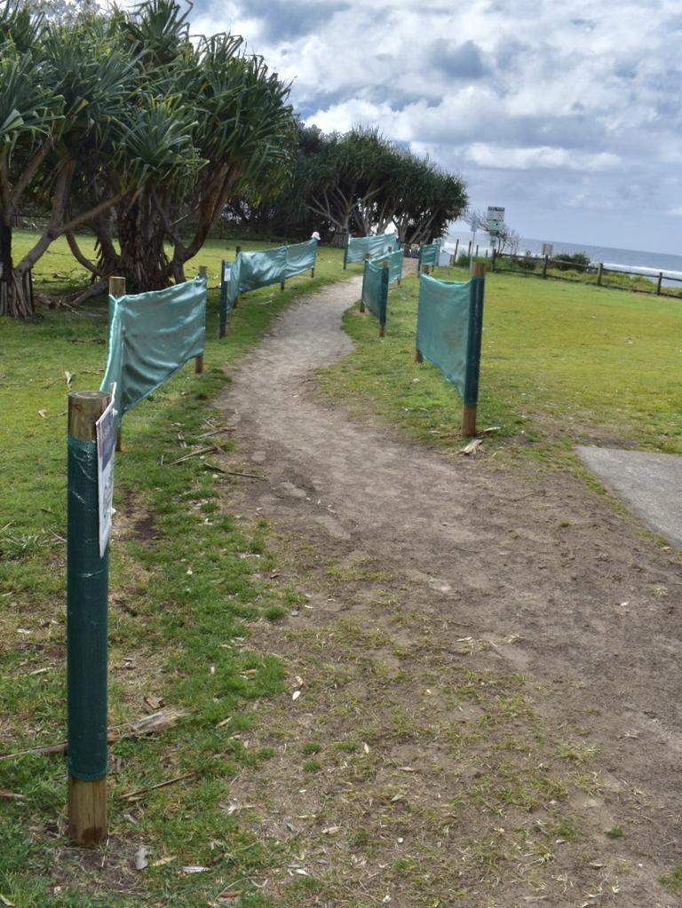 The current approved path for dog access at Lennox Head's Seven Mile Beach.