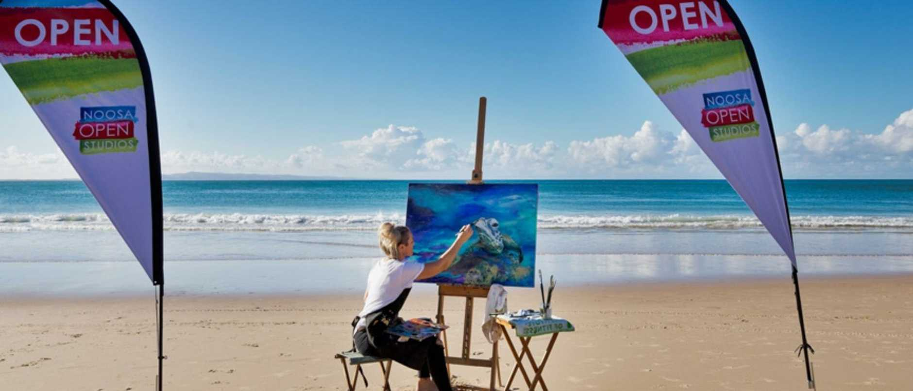Last year's promotion for the Noosa Open Studios.