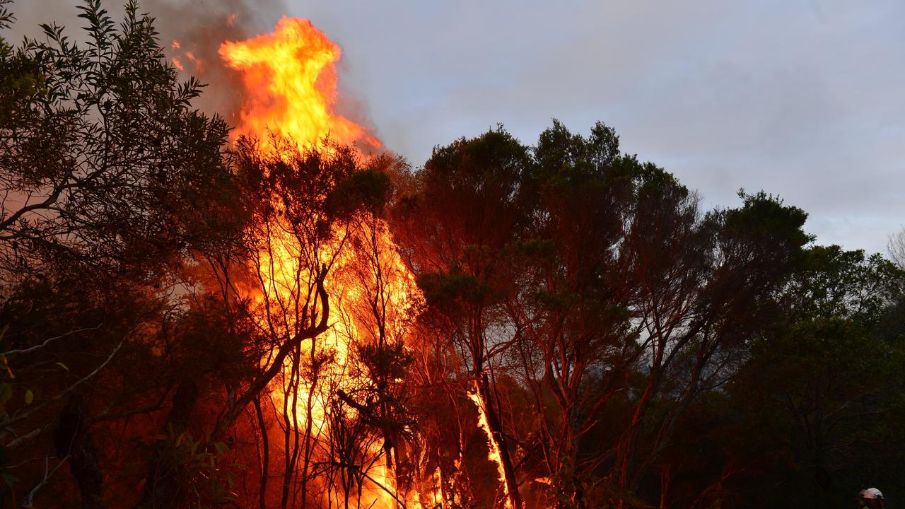 More that 40 million hectares was burnt during the 2019-20 fire season.