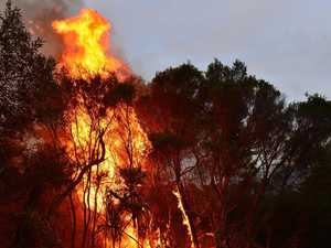The lessons we need to learn from horror bushfire season