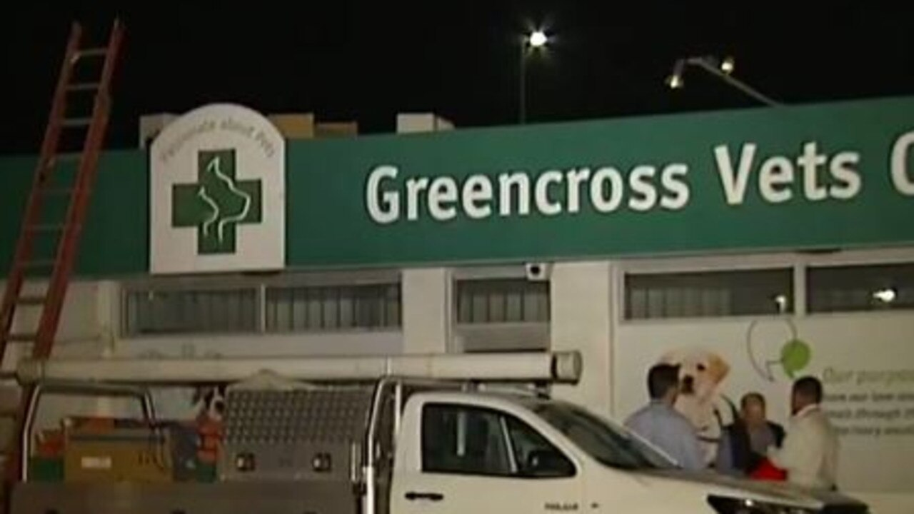 A man died while working on the roof of this Capalaba veterinary clinic. Picture: Today Show