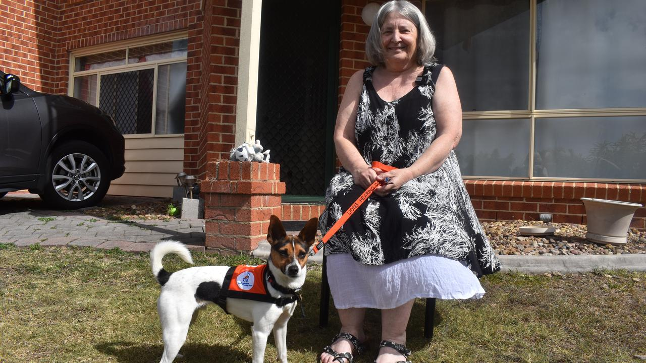 Karen Flannery with hearing assistance dog Maxie. Photo: Stuart Fast