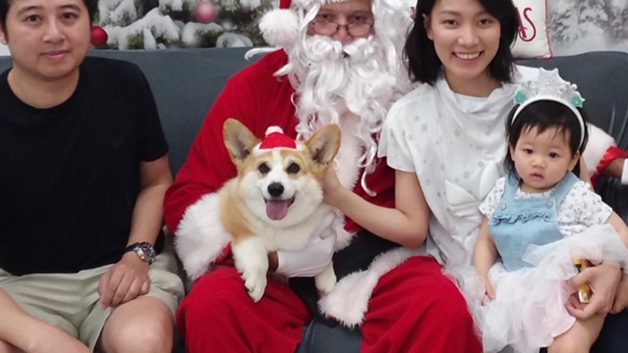 The Pham family with their beloved and now missing corgi Haku.