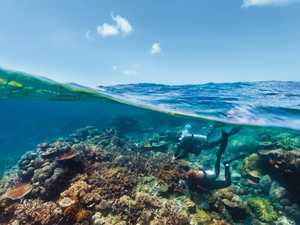 Reef resilience: Community's opportunity for positive change