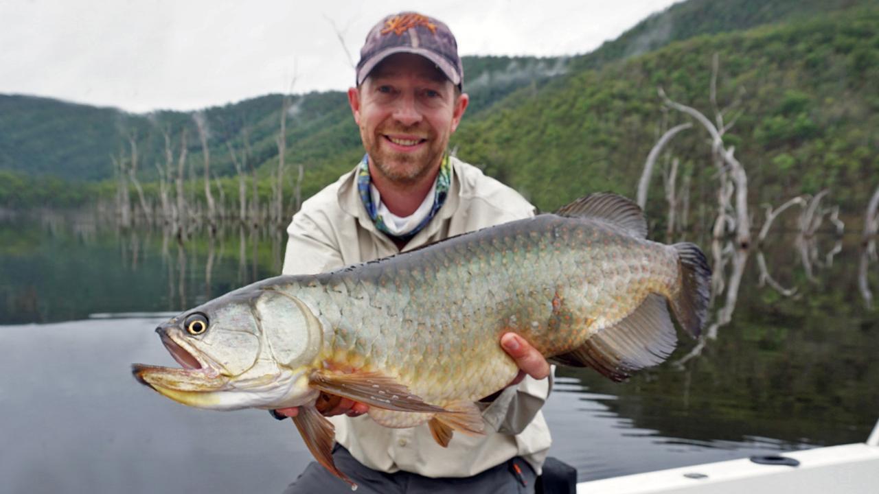 Grant Budd with a 65cm saratoga at Borumba Dam. Photo: www.fishingnoosa.com.au