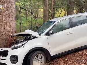 Woman trapped in traumatic single car crash