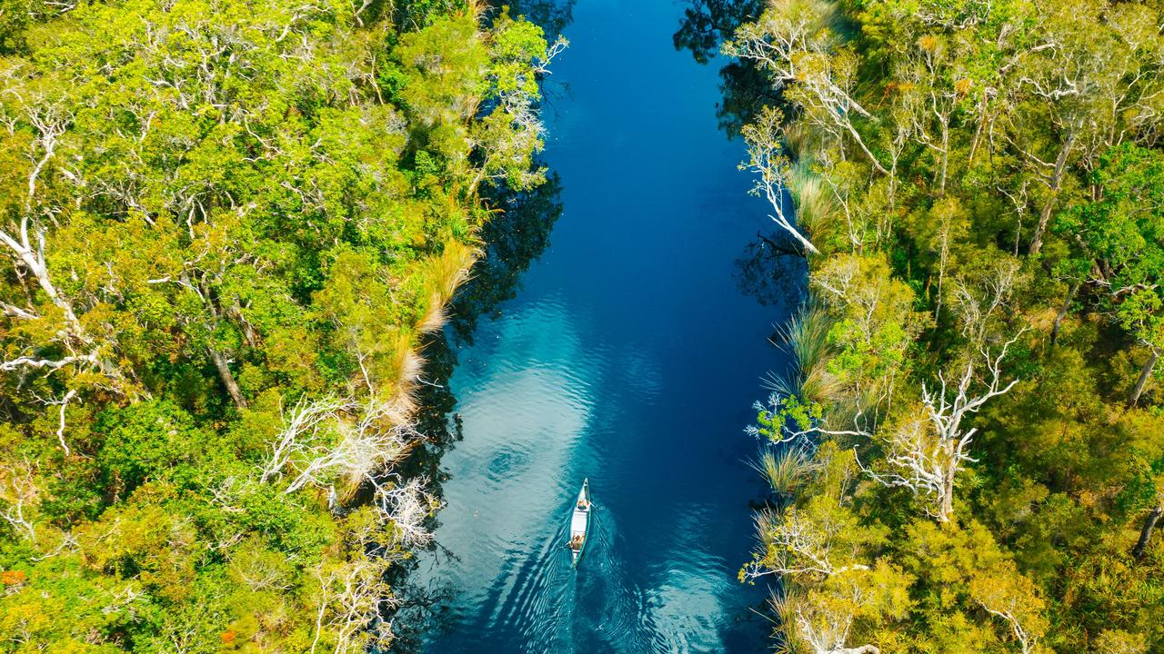 Everglades Eco Safaris will resume its eco tours to the Noosa Everglades after a five-month closure due to COVID-19.