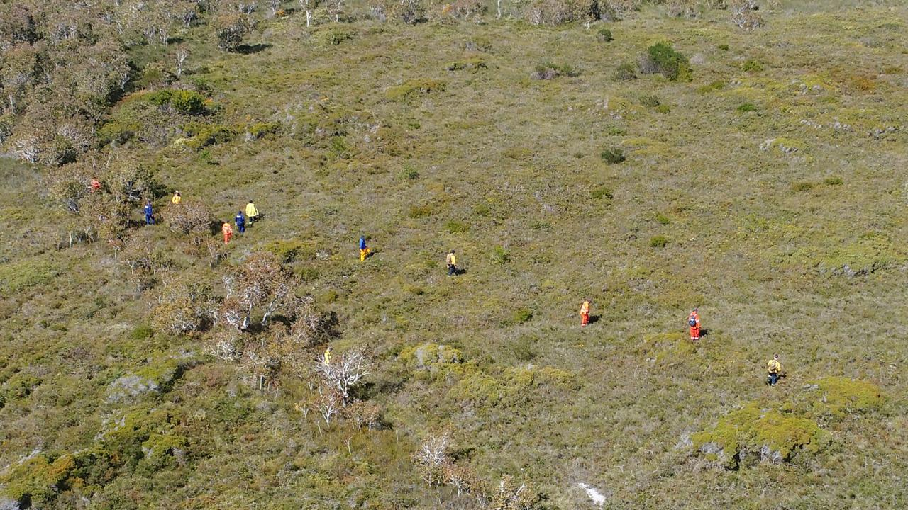 An aerial shot of searchers scouring bushland in the Yuragir National Park 600m off the road for a woman reported missing from a campground two weeks ago. Photo: Adam Hourigan