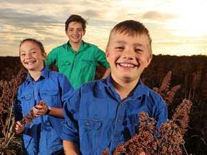 Hope springs eternal as growers look to skies