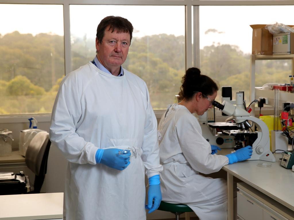 Professor Trevor Drew says a nasal spray could be used in the fight against COVID-19. Picture: Stuart McEvoy/The Australian.