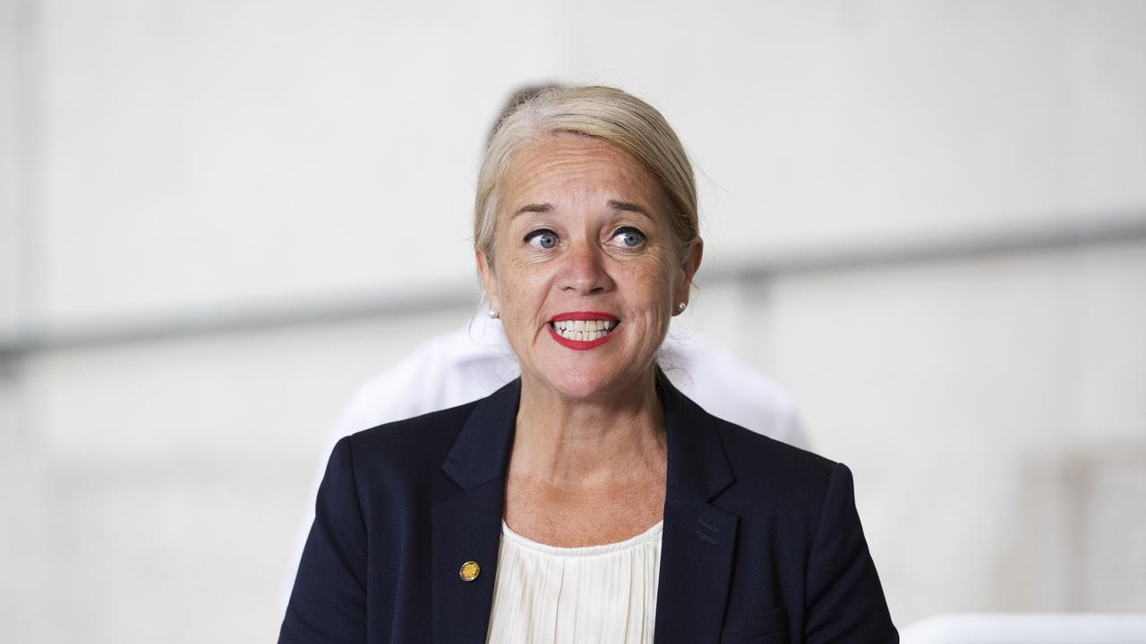 Labor MP Kim Richards benefited from One Nation preferences in the 2017 election. (News Corp/Attila Csaszar)