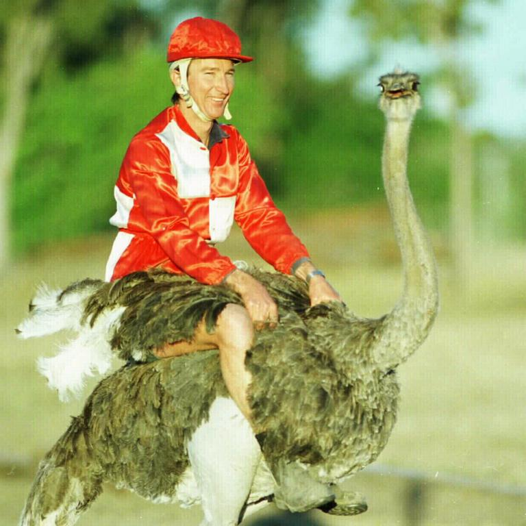 Ostrich riding is a real thing. PICTURE: JAMIE HANSON