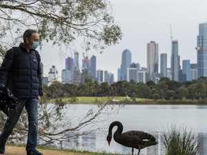 Victoria records 41 new virus cases