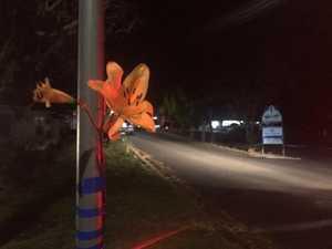 Police, paramedics desperately tried to save boy after crash