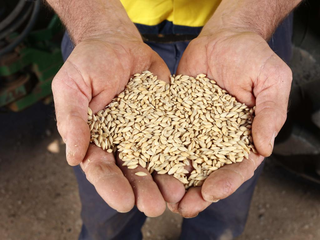 China is reliant on Aussie grain but you wouldn't know it based on their astronomical tariffs placed on barley. Picture: Supplied / Emma Brasier