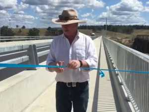 Barnaby 'whacks a bee hive' by unofficially opening bridge