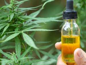 Cannabis company's share price up in smoke