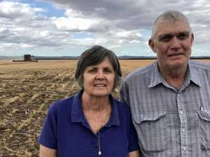 CQ farmers praying for La Niña to see crops, cattle thrive