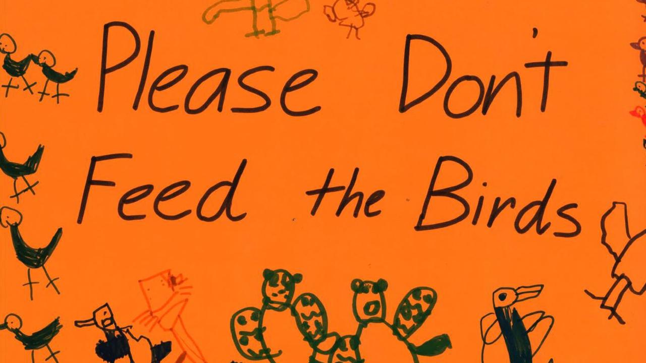 A poster asking people not to feed the birds.