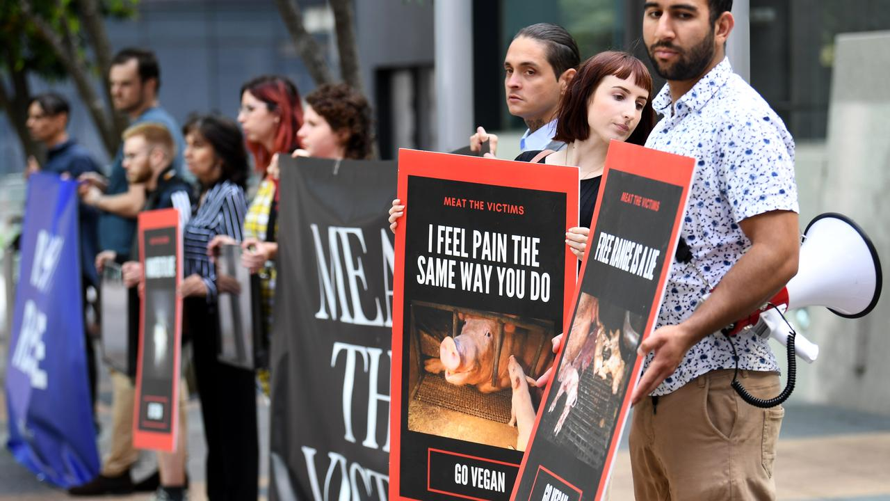 Supporters of animal rights activist Leah Ava Whetton hold signs outside court. Picture: NCA NewsWire / Dan Peled