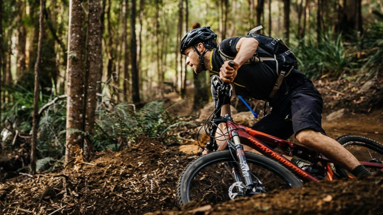 Blue Derby Pods Ride rider on Flickety Stix trail near mountain bike capital of Derby, Tasmania. Could Coffs Coast follow suit in building a mountain biking mecca? Picture credit: Blue Derby Pods Ride