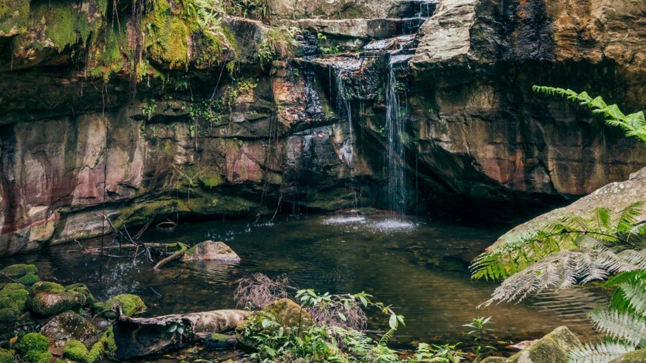 Carnarvon Gorge © Central Highlands Development Corporation Photographer Jesse Lindeman