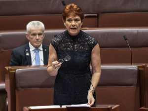 One Nation Senator to return to Fraser Coast