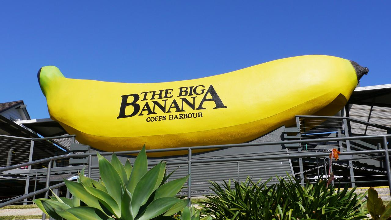 There is nothing like a few minutes at The Big Banana to make the memories of a tough 2020 go away.