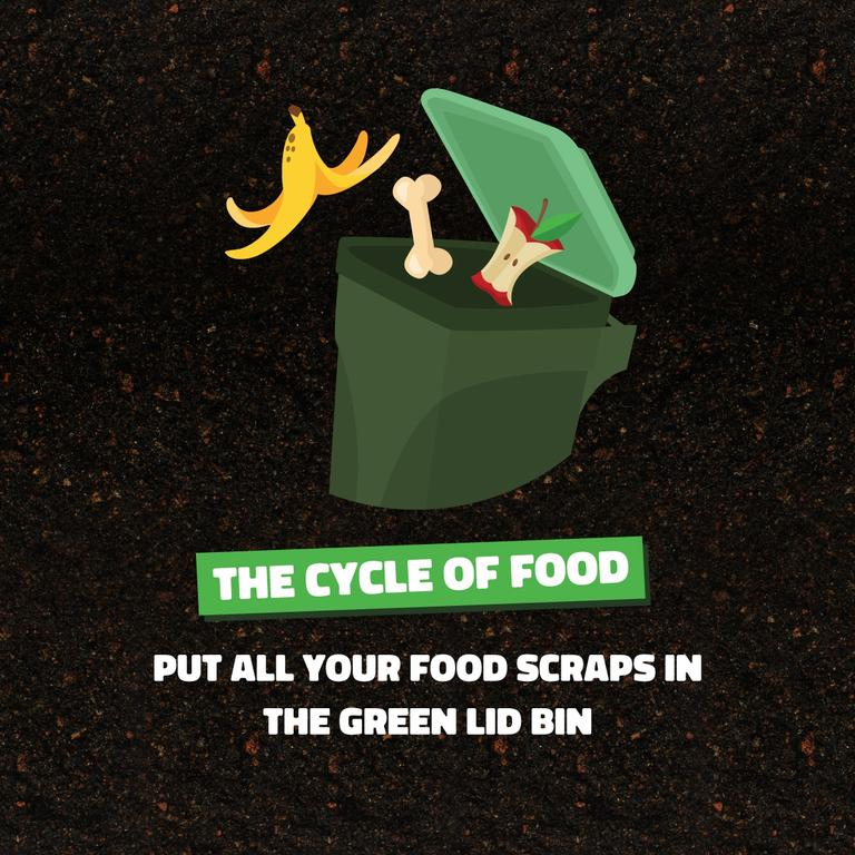Clarence residents will be involved in a new education campaign being piloted by Clarence Valley Council on food scrap waste.