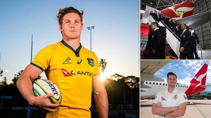 Qantas pulls $20m in sponsorship, dumps Wallabies