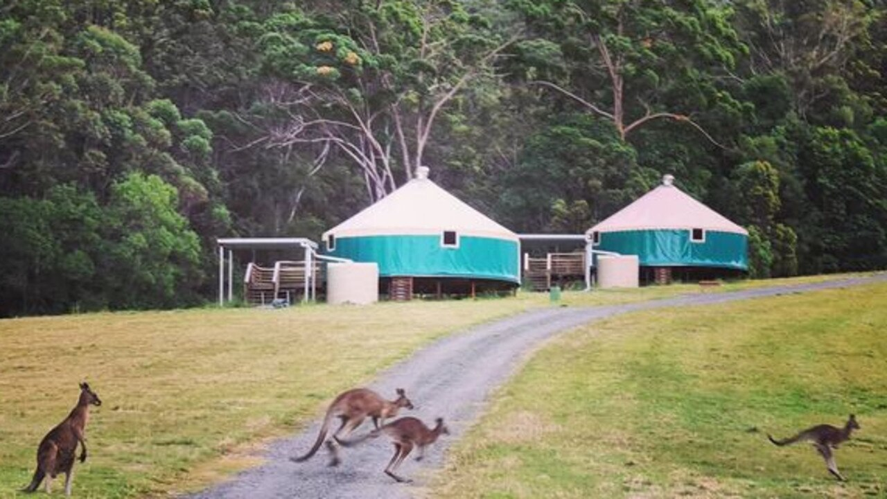 The eco stay at Pomona has some locals hopping along to welcome visitors.