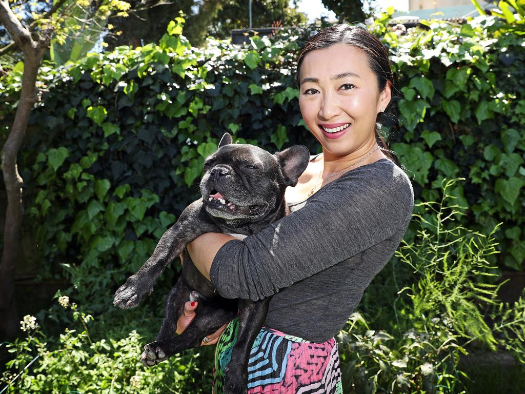Maria Sun is planning to buy pet insurance soon for her French Bulldog Hugo. Picture: Tim Hunter.