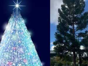 OPINION: 'No apology needed for canning Xmas tree decorations'