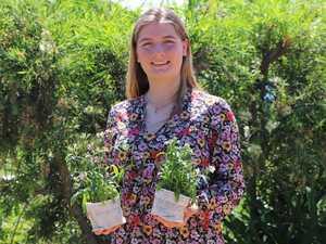 Sustainable pot plants help teen's business grow
