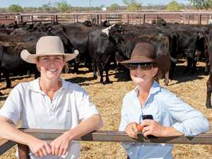 Livestock exchange broadens services in western QLD