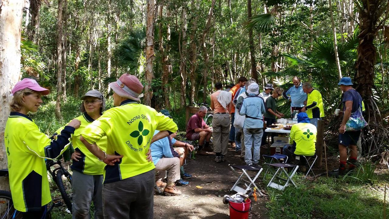 The volunteer bushcarers waging their war on weeds.
