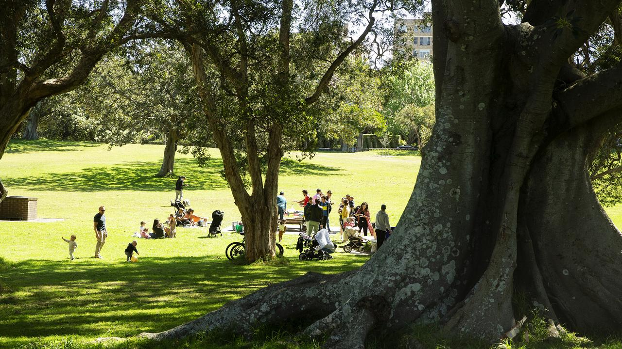 People are seen during a picnic in Centennial Park, Sydney. Coronavirus restrictions continue to relax for residents in NSW as the state's COVID-19 community transmission case numbers remain low. Picture: Jenny Evans/Getty Images