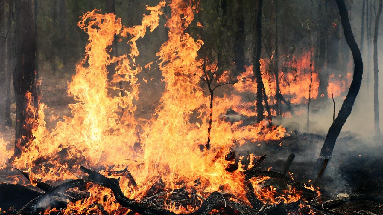 Multiple crews are battling a bushfire at Kandanga. File photo