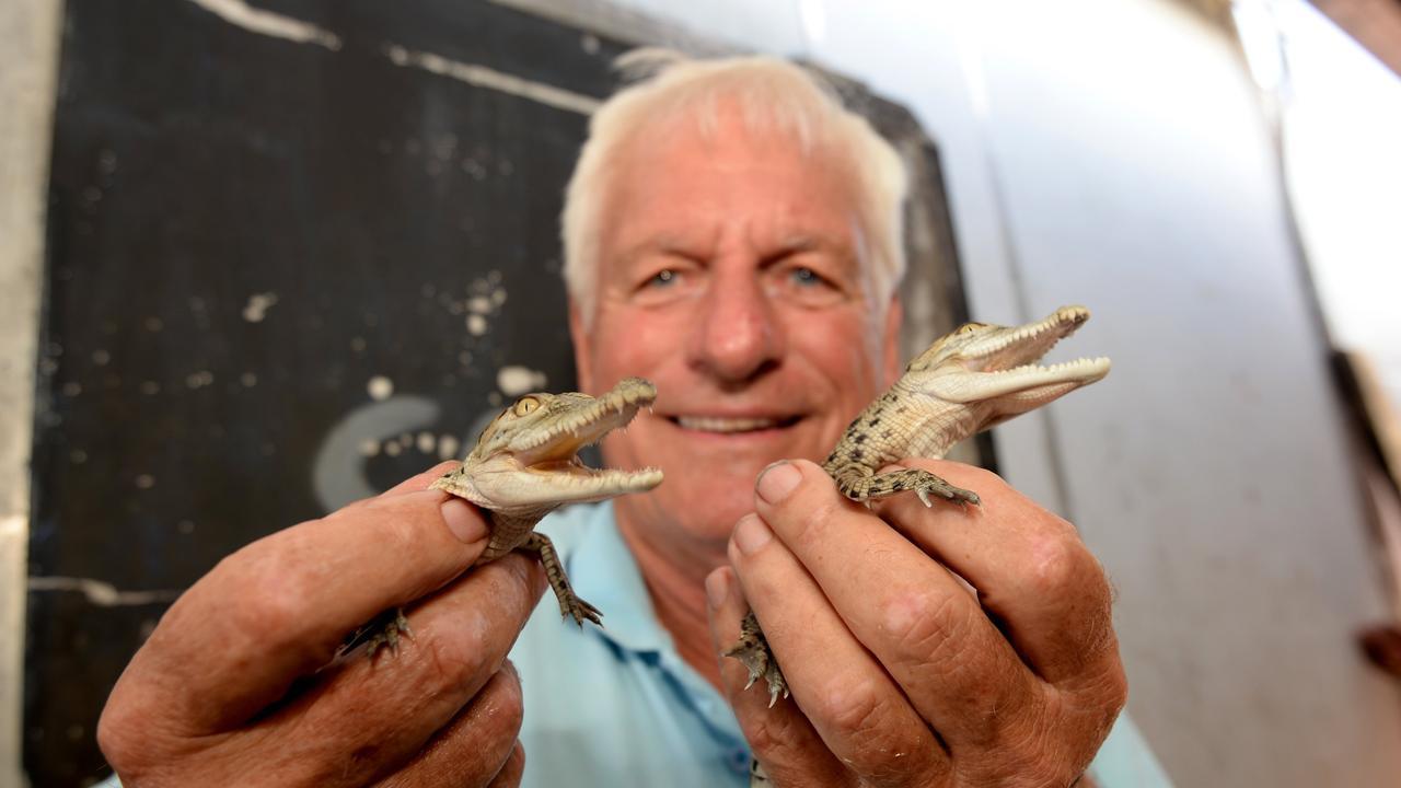 Koorana Crocodile Farm's John Lever with two new croc hatchlings.