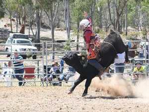 MT MORGAN JUNIOR RODEO 7-12 Mini Bull Ride: Angus