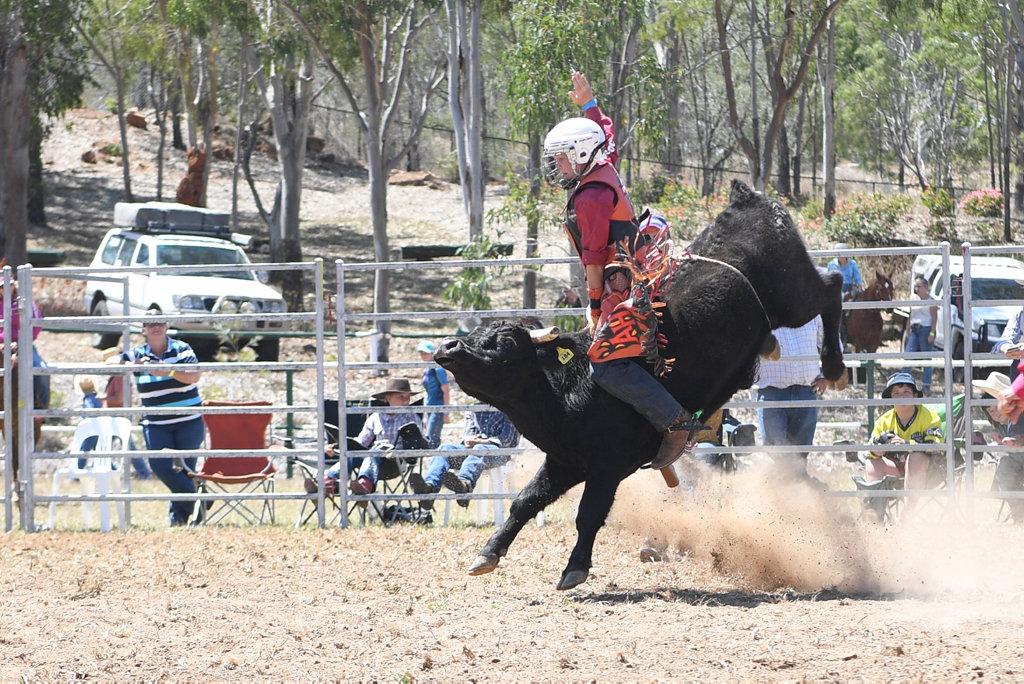 Image for sale: MT MORGAN JUNIOR RODEO 7-12 Mini Bull Ride: Angus Hollands