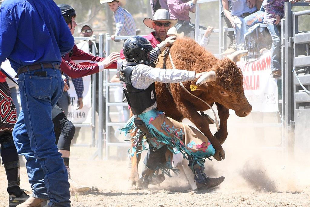 Image for sale: MT MORGAN JUNIOR RODEO U15 Mini Bull Ride: Dawson Foden