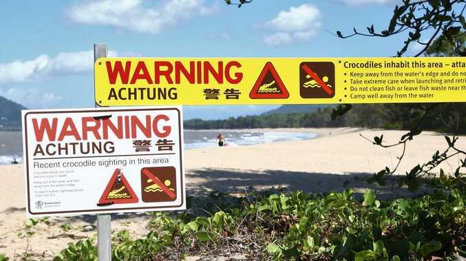 Beach sunbakers oblivious to lurking croc threat
